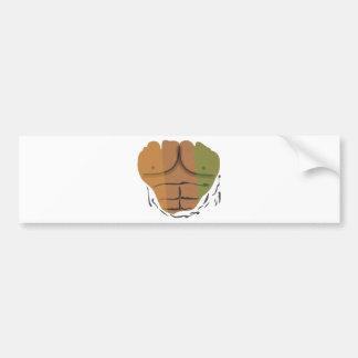 Desi within bumper sticker