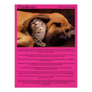 Desiderata under the beagle ear sleeping Posters Poster