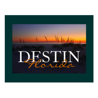 Destin Florida Sea Oats at Sunset Postcard