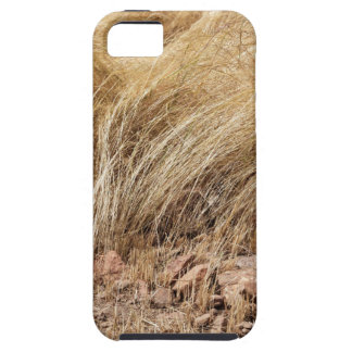 Detail of a teff field during harvest tough iPhone 5 case