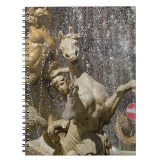 Detail of Fontana d'Artemide, Ortigia Notebook
