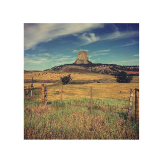 Devils Tower Wood Wall Art