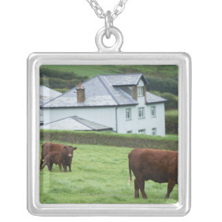 Devon, England Silver Plated Necklace