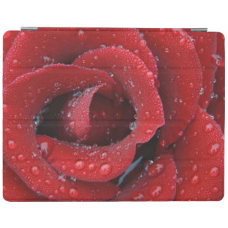 Dew covered red rose decorating grave site in iPad cover