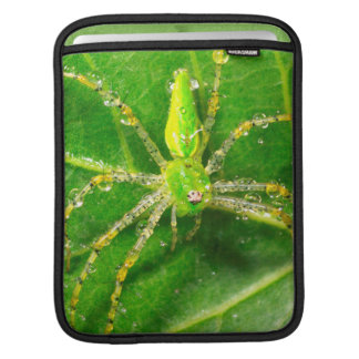 Dew on a Green Lynx Spider iPad Sleeve