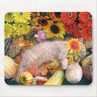 Di Milo, Cute Tabby Kitten Cat, Fall Color Flowers Mouse Pad