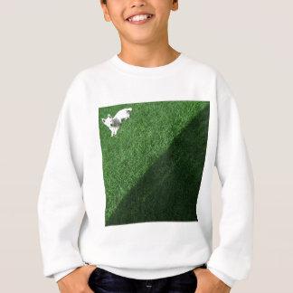Diagonal Scotty - Sweatshirt