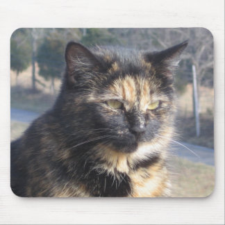 Dignified Cat Mouse Pad