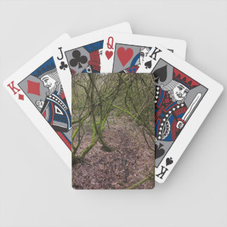 Dirt Path Playing Cards