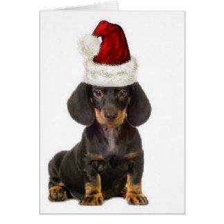 Ditzy Dogs~Original Notecard~Dachshund Greeting Card