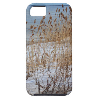 Divergent Fate Case For The iPhone 5