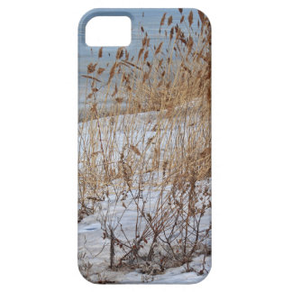 Divergent Fate iPhone 5 Covers