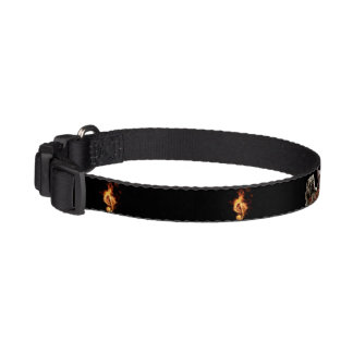 D'n'P Small Dog Collar