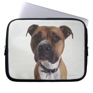 Dog, American Staffordshire Terrier sitting, Laptop Sleeve
