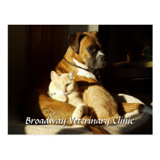 Dog and Cat Veterinary Appointment Postcard