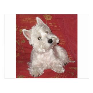 Dog Art: the Westie Postcard