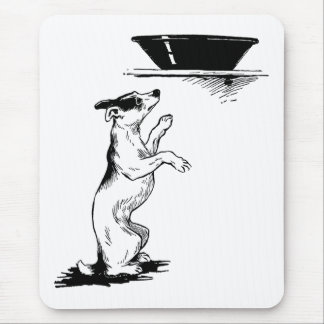 Dog Checking Out Basin Mouse Pad