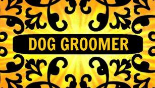 Dog grooming business cards zazzle nz dog groomer sunshine damask business card reheart Choice Image