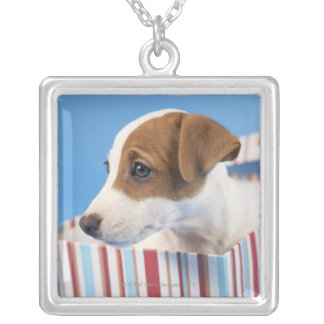 Dog in a Gift Box Silver Plated Necklace