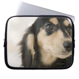 Dog Laptop Sleeve