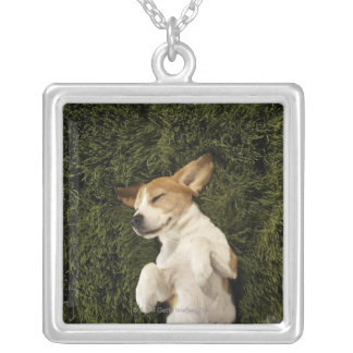 Dog Lying in Grass Sleeping Silver Plated Necklace