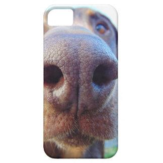 Dog nose closeup iPhone 5 cover