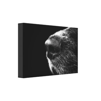 Dog Nose Wrapped Canvas