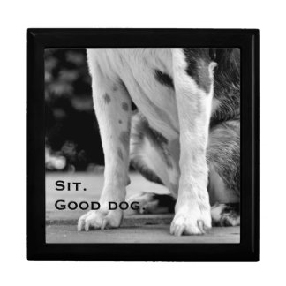Dog Sit Black and White Gift Box