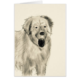 Dog sketch card