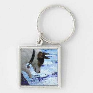 Dog touching water at the swimming pool Silver-Colored square key ring