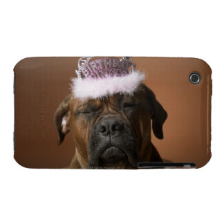 Dog with birthday crown on head iPhone 3 Case-Mate case