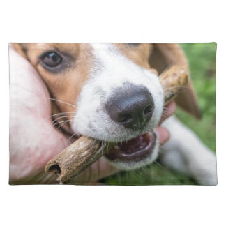 Dog with Stick Placemat