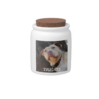 Doggie Treats Candy Jars