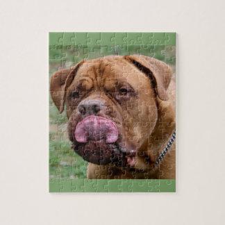 Dogue de Bordeaux 8x10 photo puzzle