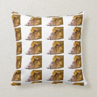 Dogue de Bordeaux Cushion