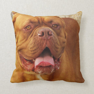 Dogue de Bordeaux -  French Mastiff breed picture Cushion