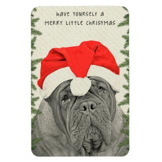 Dogue de Bordeaux Merry Little Christmas Magnet