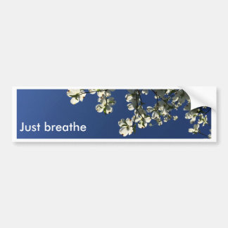 Dogwood Blossom Cards Bumper Sticker