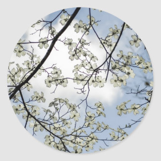 Dogwood Blossoms and Blue Sky Classic Round Sticker