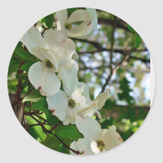Dogwood Classic Round Sticker