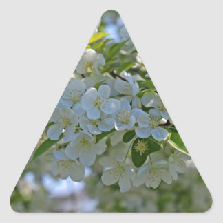 Dogwood Triangle Sticker