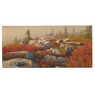 Dolly Sods Wilderness Fall Scenic With Fog Wood USB Flash Drive