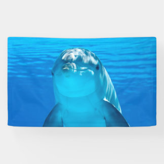 Dolphin Banner