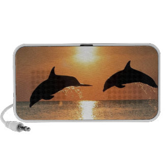 Dolphins by Sunset Notebook Speakers