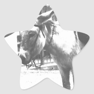 Donkey Delivery Star Sticker