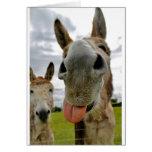 Donkey Humour Greeting Card