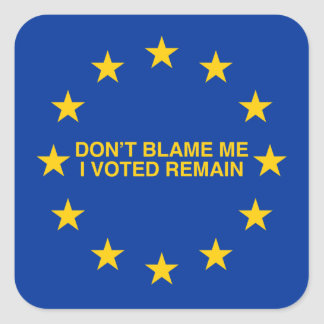 Don't blame me, I voted for Remain Square Sticker