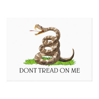 Dont Tread On Me Gadsden American Revolution Flag Canvas Print