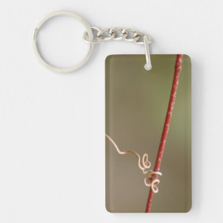 Double Vine Heart Key Ring