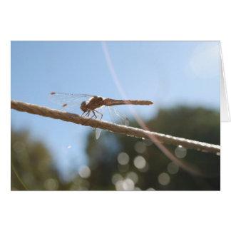 Dragonfly Good Luck Card